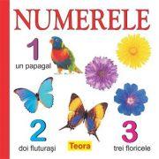 Numerele - Diana Rotaru