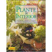 Plante de interior (6076)