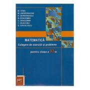 Matematica - Culegere de exercitii si probleme pentru clasa XI