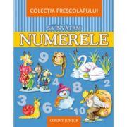 Sa invatam numerele (Colectia prescolarului)