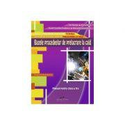 Bazele procedeelor de prelucrare la cald - Manual pentru clasa a X-a