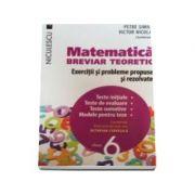 Matematica pentru clasa a VI-a. Breviar teoretic cu exercitii si probleme propuse si rezolvate. Teste initiale
