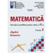 Matematica - exercitii si probleme pentru clasa a VI-a, partea I, ed. a II-a