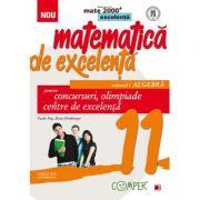 Matematica de excelenta pentru concursuri, olimpiade si centre de excelenta - clasa a XI-a Volumul I