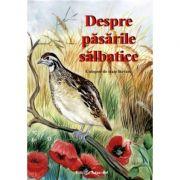 DESPRE PĂSĂRILE SĂLBATICE - Povesti ilustrate