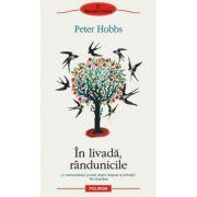 In livada, rindunicile (Peter Hobbs)