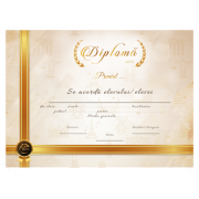 Diploma Premii Scolare 2017