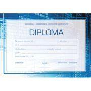 Diploma scolare INFORMATICA (DLFD018)