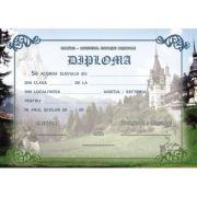 Diploma scolara ISTORIE (DLFD019)