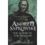 Tower of the Swallow ( Andrzej Sapkowski )