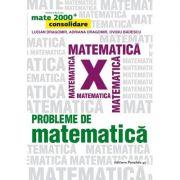 Mate 2000+ Consolidare. Probleme de matematica pentru clasa a X-a