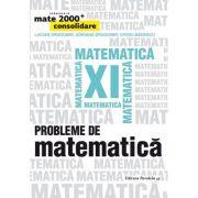 Mate 2000+ Consolidare. Probleme de matematica pentru clasa a XI-a