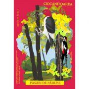 Pasari din fauna Romaniei care traiesc in padure (Istina Mirescu, Olivia Campean)