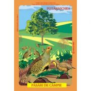 Pasari din fauna Romaniei care traiesc la campie (Istina Mirescu, Olivia Campean)