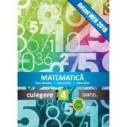 Matematica. Culegere clasa a IV-a - Adina Micu, Simona Brie, Flora Abrudan