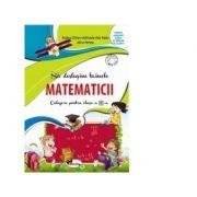 Sa deslusim tainele matematicii - Culegere pentru clasa a III-a (Rodica Chiran)