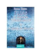 Elias si spioana Carturarilor 2. O torta in noapte - Sabaa Tahir