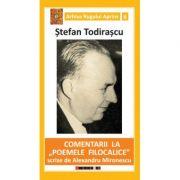 Comentarii la 'Poemele filocalice' scrise de Alexandru Mironescu - Stefan TODIRASCU