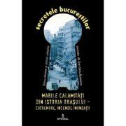 Marile calamitati din istoria orasului. Cutremure, incendii, inundatii, epidemii - Dan-Silviu Boerescu