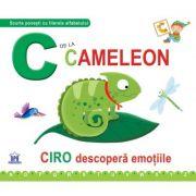 C de la Cameleon. Cartonata - Greta Cencetti