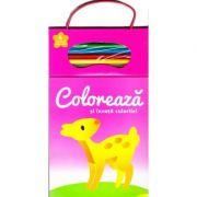 Coloreaza si invata culorile! 2