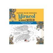 Miracol in lumea emotiilor - Dragos Iulian Matei, Bianca Nita, Paula-Steluta Dobrinoiu