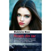 Picata din cer - Madeleine Moon
