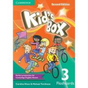 Kid's Box Level 3 Flashcards