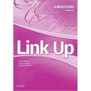 Link Up Pre-Intermediate Workbook
