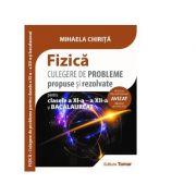 Fizica. Culegere de probleme propuse si rezolvate pentru clasele a XI-a, a XII-a si bacalaureat - Mihaela Chirita