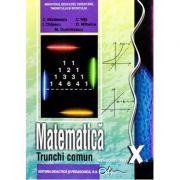 Manual matematica - clasa a X-a (trunchi comun)