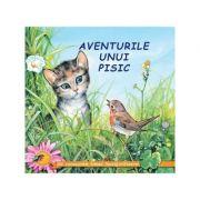 Aventurile unui pisic - Sa cunoastem lumea inconjuratoare!