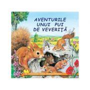Aventurile unui pui de veverita - Sa cunoastem lumea inconjuratoare!
