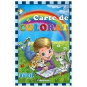 Carte de colorat: Baieti