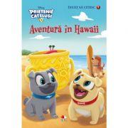 Prietenii catelusi. Aventura in Hawaii. Invat sa citesc (nivelul 1) - Disney