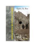 Mesagetii Muntelui Kash - Radu M. Ilea