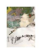 Mitteleuropa periferiilor - Cornel Ungureanu
