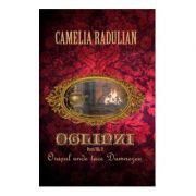 Oglinzi vol. 2: Orasul unde tace Dumnezeu - Camelia Radulian