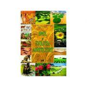 Omul si evolutia agriculturii - Lucian Ilinca