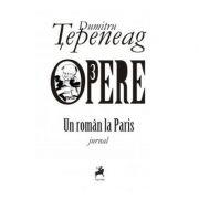 Opere 3. Un roman la Paris - Dumitru Tepeneag