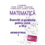 Matematica, exercitii si probleme pentru clasa a VI-a, semestrul I - Delia Schneider
