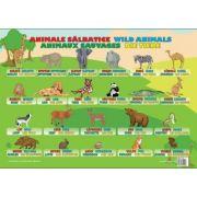 Animale Salbatice - Plansa educativa
