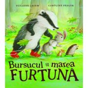 Bursucul si marea furtuna - Suzanne Chiew