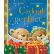 Cadoul perfect - Stella J. Jones