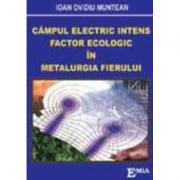 Campul electric intens, Factor ecologic in metalurgia fierului - Ioan Ovidiu Muntean
