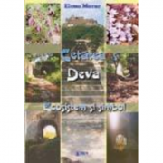Cetatea Deva. Ecosistem si simbol - Elena Morar