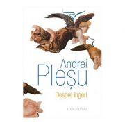 Despre ingeri - Andrei Plesu