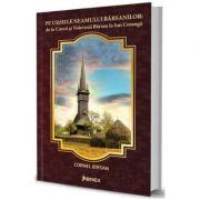 Pe urmele Neamului Barsanilor: de la Cnezii si Voievozii Barsan la Ion Creanga - Cornel Birsan