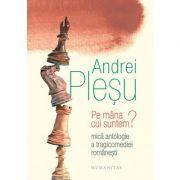 Pe mana cui suntem? Mica antologie a tragicomediei romanesti - Andrei Plesu