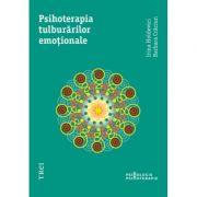 Psihoterapia tulburarilor emotionale - Irina Holdevici